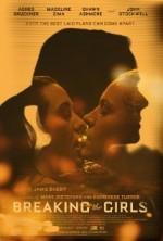 Breaking The Girls (2013) afişi