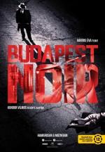 Budapest Noir (2017) afişi