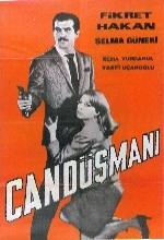 Can Düşmanı (1966) afişi