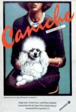 Caniche (1979) afişi