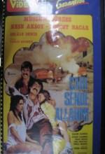 Çare Sende Allahım (1984) afişi