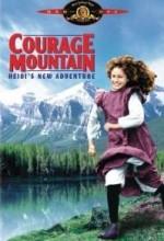 Cesaret Dağı (1989) afişi