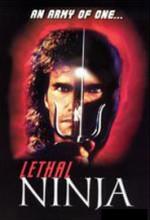 Cesur Ninja (1993) afişi