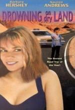 Çöl Macerası (1999) afişi