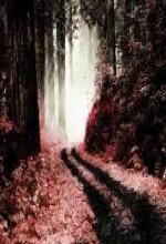 Crimson Forest (2009) afişi