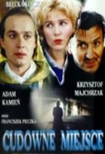 Cudowne Miejsce (1994) afişi