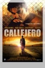 Callejero (2015) afişi