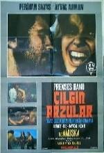 Çılgın Arzular(ı) (1974) afişi