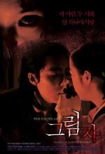 Çin Kelebeği (2007) afişi