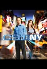 CSI: NY Sezon 8 (2012) afişi
