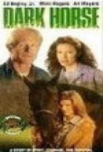 Dark Horse! (1992) afişi