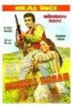 Debreli Hasan (1973) afişi