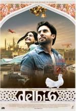 Delhi 6 (2009) afişi
