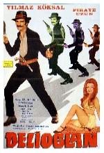 Delioğlan (1972) afişi