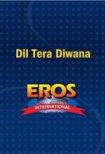 Dil Tera Diwana (1996) afişi