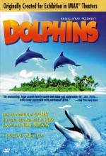 Dolphins(ı) (2000) afişi