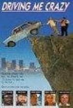 Driving Me Crazy (1991) afişi