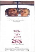 Bayan Daisy'nin Şoförü (1989) afişi