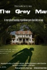 Documenting the Grey Man  afişi