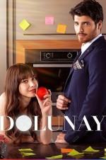 Dolunay (2017) afişi