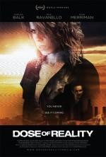 Dose of Reality (2013) afişi