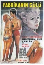 Fabrikanın Gülü (1964) afişi