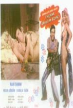 Fırçana Bayıldım Boyacı (1978) afişi