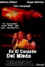 Fırtınanın Ortasında (2004) afişi