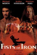 Fists Of Iron (1995) afişi