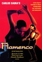 Flamenco (1995) afişi