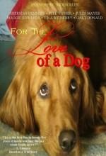 For The Love Of A Dog (2008) afişi