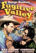 Fugitive Valley (1941) afişi