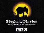 Fillerin günlüğü (2008) afişi