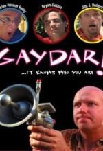 Gaydar (2002) afişi