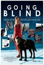 Going Blind (2010) afişi