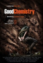 Good Chemistry (2008) afişi