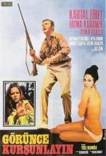 Görünce Kurşunlarım (1971) afişi