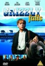 Grizzly Falls (1999) afişi
