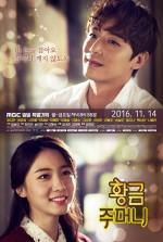 Golden Pouch (2016) afişi