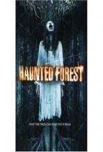 Haunted Forest (2007) afişi