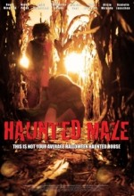 Haunted Maze (2011) afişi