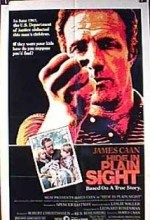Hide In Plain Sight (1980) afişi