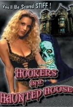 Hookers In A Haunted House (1999) afişi