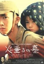 Hotaru No Haka (2008) afişi