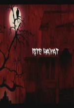 Işte Hayat (ı) (2008) afişi