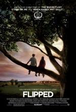 İlk Aşk (2010) afişi