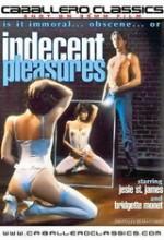 ındecent Pleasures (1984) afişi