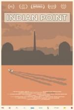 Indian Point (2015) afişi