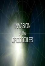 Invasion Of The Crocodiles (2006) afişi