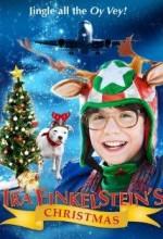 ıra Finkelstein's Christmas (2011) afişi